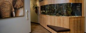 Signature Orthodontics Fish Tank